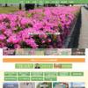 別府市ウェブサイト