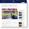 HCキャロル、「新生シーホークスは2012年シーズンのよう」 | NFL JAPAN.COM