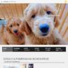 http://www.dogplex.co.jp
