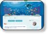 キワイルカのブログ 99%の遭遇率!ハワイ島で野生のイルカと友達になる。