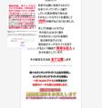 原田陽平 携帯アダルトアフィリ ランキング攻略ツール 【ランキングアップシステム】