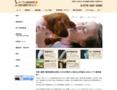 【メイプル動物病院】 京都市上京区にある動物病院