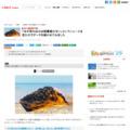 「本が売れぬのは図書館のせい」というニュースを見たのでデータを確かめてみました - CNET Japan