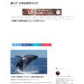 「反捕鯨」の国際世論はどのように形成されたか width