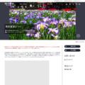葛飾菖蒲まつり/東京の観光公式サイトGO TOKYO