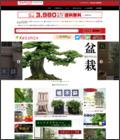 人工観葉植物と造花の通販ケイシン