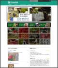 野菜・果物vfn-market