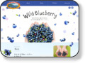 http://www.wildblueberry.jp/health.html