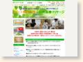 http://bc-tsushima.com/