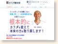http://www.seiwadou.jp/