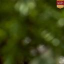 新宿区 プレミアホテル-CABIN-新宿