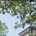 袋田温泉 思い出浪漫館|公式ホームページ
