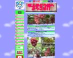 ぶどう狩り&ぶどう販売 坂上ぶどう園 新潟県聖籠町