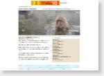 温泉の泉質と効能情報