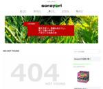 スマホの写真が100円から販売できるSnapmart(スナップマート)を利用してみた - そらより
