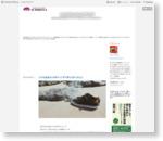 小さな会社を10年やってきて学んだ5つのこと - ICHIROYAのブログ