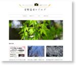 花と緑のフォトライター 宮野真有の「植物時間」 | ミニバラ大好き、公園大好き。植物を知り、四季を感じ、日々を楽しむブログ
