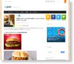 【悲報】かるびマック(390円)が詐欺。「これだったら牛丼のほうがいいわ!」の声 | netgeek