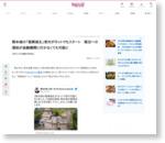 熊本城の「復興城主」受付がネットでもスタート 復旧への援助が金融機関に行かなくても可能に