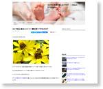 カメラ初心者はエントリー機を買うべきなのか? : Nikon Dfでカメラと写真を楽しむブログ