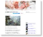 カメラを購入するときに心がけていること : Nikon Dfでカメラと写真を楽しむブログ