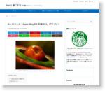 [ブログ]みーけさんの『Apple Blog百人百録2013』がすごい! | Macと過ごす日々ver.WP