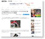 スマホ対応スーツにカカオトークスマホなど釜山で見つけたモバイル製品 - 週アスPLUS