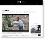 動画:「子どもたちに新鮮な空気を」、焼失したポルトガル最古の森で再生プロジェクト