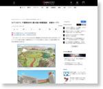 セブン&アイ、千葉県柏市に最大級の商業施設 来春オープン - ITmedia ビジネスオンライン