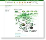 登山コース | 高尾登山電鉄公式サイト