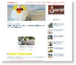 【沖縄】一度は食べたい人気スイーツ7選!地元で話題のひんやりスイーツから和菓子まで。
