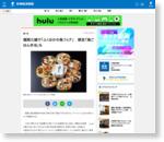 福岡三越で「ふくおかの魚フェア」 限定「海ごはん弁当」も