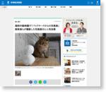 福岡市動物園で「バックヤードからの写真展」 飼育員らが撮影した写真展示と人気投票