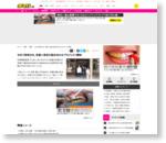 せめて旅気分を、京都人気店の詰め合わせプロジェクト開始/デイリースポーツ online
