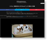 X-Pro1、開封初日にXF35mmF1.4 Rで撮った写真 | Hinemosu