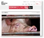 アリババ、1000万頭規模の巨大養豚場の人手不足にAIを導入