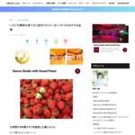 ブランドイチゴブーム!イチゴの甘い果実の見分け方&おすすめの品種と苺の美味しい食べ方、苗作りのコツ&簡単な育て方を解説 | JIBURi.com