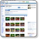 http://www.weblio.jp/category/nature/otnet