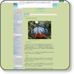 https://ameblo.jp/o2kawa/entry-12447352421.html