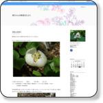 http://nobushun.exblog.jp/29254296/
