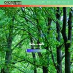 NaNo-s-spot<