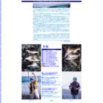 ドカーン釣り オフィシャルサイト「これがドカーン釣りだ!」 サイトのキャプチャー画像