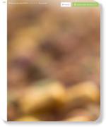 http://www.arata-jp.com/