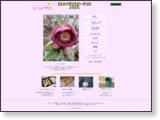 とものベジフラガーデン 庭友だちのともさんのサイトです。野菜と花をたくさん作っていて大変勉強になります。
