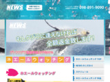 http://www.tms-news.jp/plans/whalewatching/