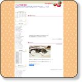 http://sagadanokaachan.n-da.jp/