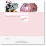 鯛ラバ.netのサイトイメージ