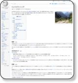 http://ja.wikipedia.org/wiki/%E3%83%88%E3%83%AC%E3%82%A4%E3%83%AB%E3%83%A9%E3%83%B3%E3%83%8B%E3%83%B3%E3%82%B0