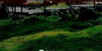 加賀・伝統工芸村ゆのくにの森 - 小松 金沢 北陸 -
