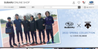https://www.subaruonline.jp/sti/accessory/STSG19101510/